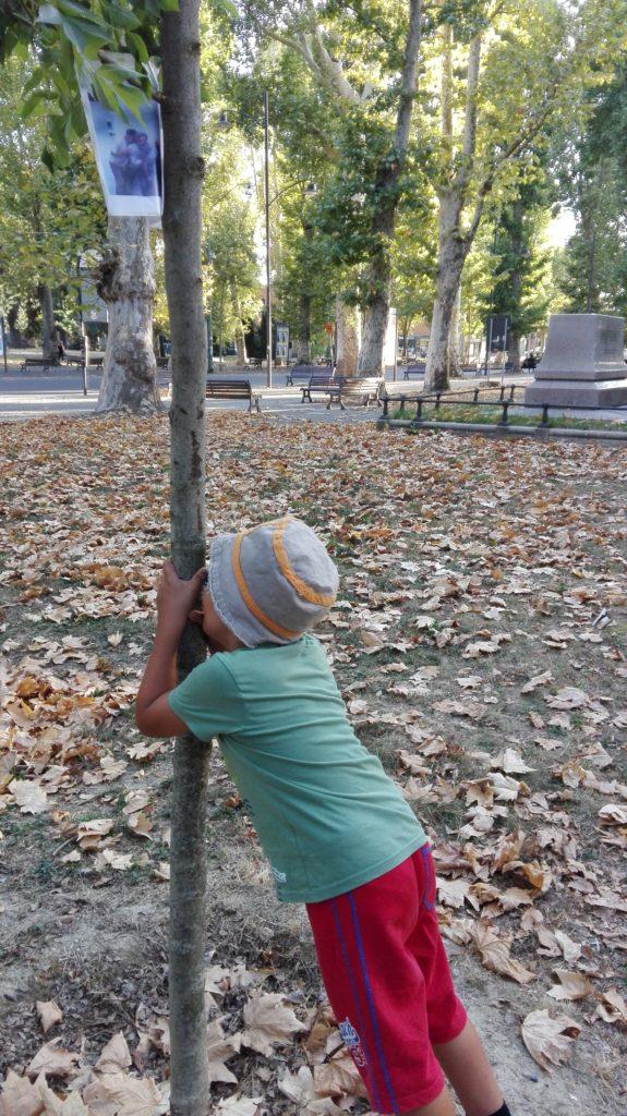 Il ritrovo del 28 luglio presso l'albero del dissesto