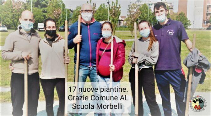 17 piantine piantate da BlogAL il 17 aprile alle ore 09.17 in Via Maria Bensi ad #ALESSANDRIA